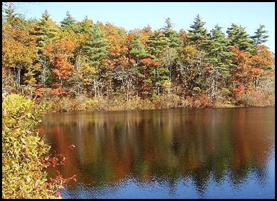 fall-4_thumb2