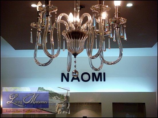 NAOMI, Wearable Art Pieces