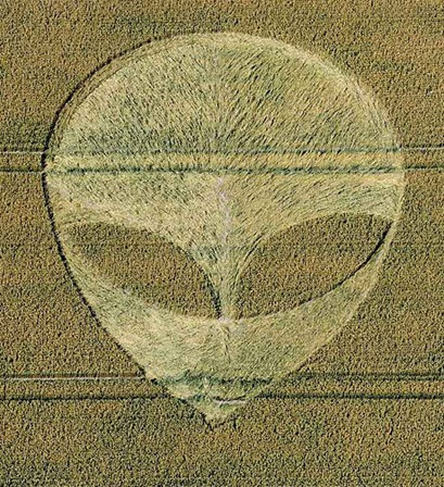 Cercuri in lanuri 20 Iulie