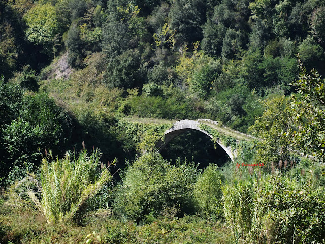 ponte 2013_2.jpg