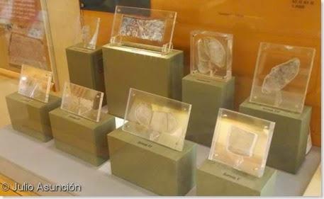 Plomos de La Serreta - Museo Arqueológico de Alcoi