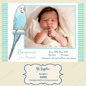 BA002 budgies photo printable birth announcement etsy 1