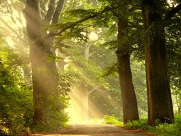 raios de luz na umbanda