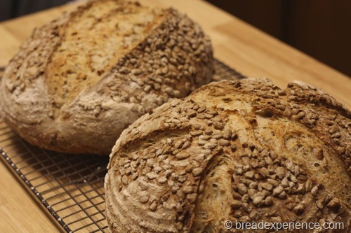 sunflower-seed-bread_1409