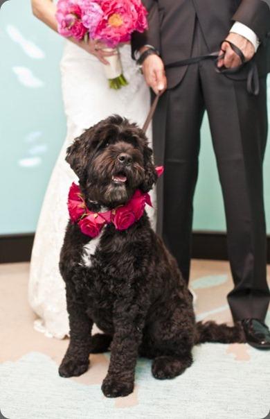 5740_721691976365_3714247_n at hailey bernstein's wedding zest floral