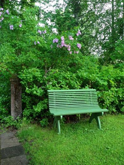02. Trädgårdsglimt