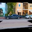 Black Mustang .
