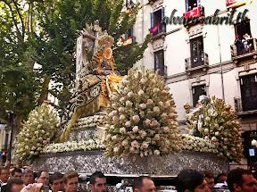 exorno-floral-centenario-coronacion-canonica-año-jubilar-mariano-angustias-granada-alvaro-abril-vela-2013-(30).jpg