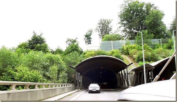 Ponts pour animaux - passages à faune (22)