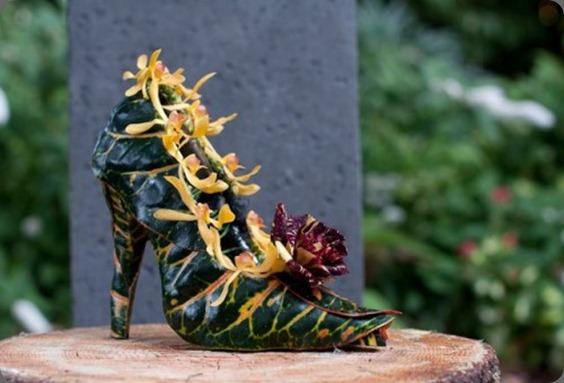 fran orchidrose-shoe-Françoise-Weeks-500x332 (1)