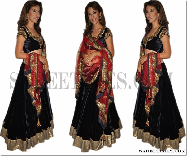 Perizaad_Zorabian_Designer_Saree