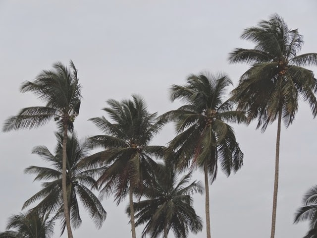 plage libreville3