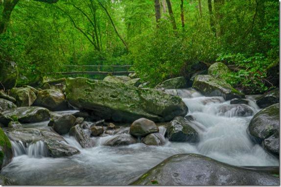 porters creek_5363