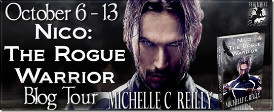 Nico The Rogue Warrior Banner 851 x 315_thumb[1]