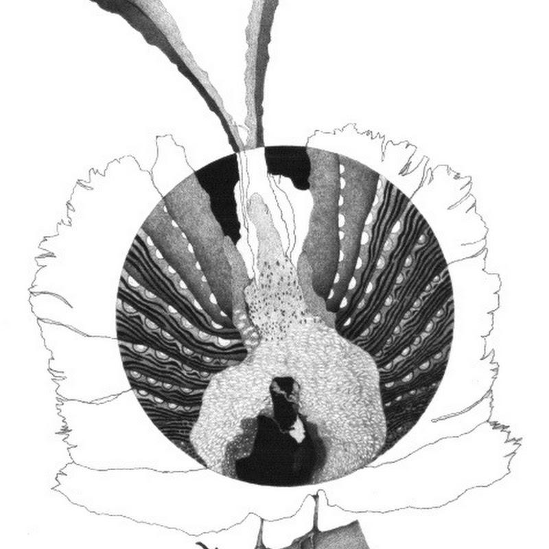 Deborah Parks - Creating Art From Nature
