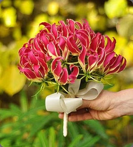 30102010 004 spriggs florist blogspot