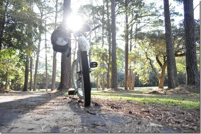 10-3011 bike  woods 240