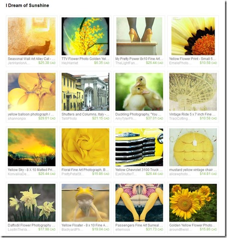 sunshine treasury