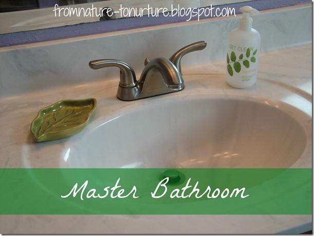 Master Bath 10