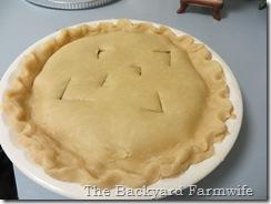 Apple Raisin Pie - The Backyard Farmwife