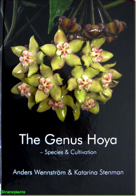 the genus hoya - species & cultivation- il genere hoya