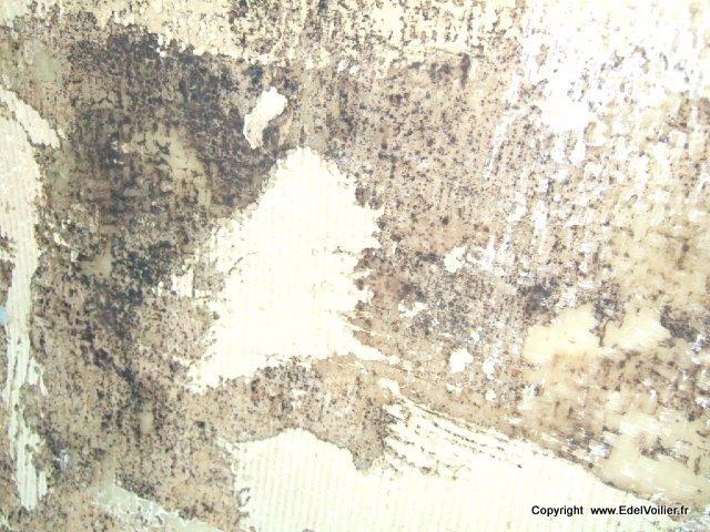 En Noir se sont des tâche de moisissure laissée par l'humidité qu'il y avait entre la moquette et la coque.