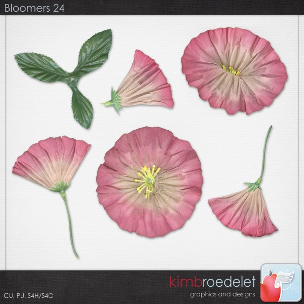 kb-Bloomers24