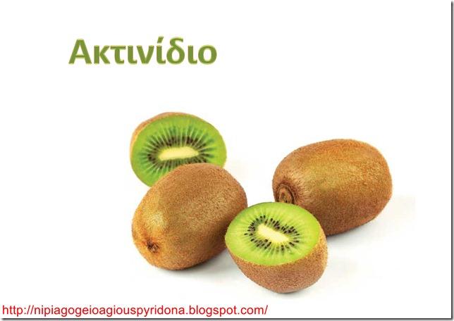 Τα φρούτα του χειμώνα-9