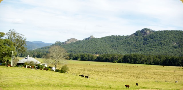 Farm on Gloucester/Dungog Rd. NSW