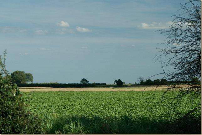 lincolnshire project-1-2