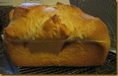 sandwich-bread