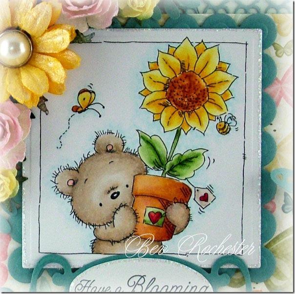 bev-rochester-lotv-summer-bears4a