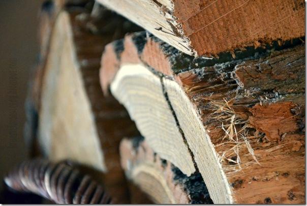 4 von 7 Sachen - Holz reingeholt