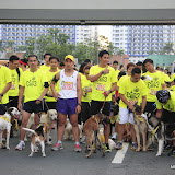 Pet Express Doggie Run 2012 Philippines. Jpg (21).JPG
