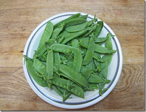 Oregon SUgar Pod II snow peas