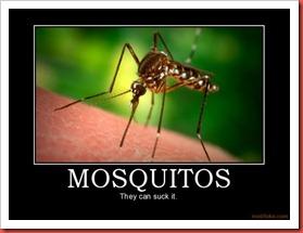 mosquitos-suckit oct25