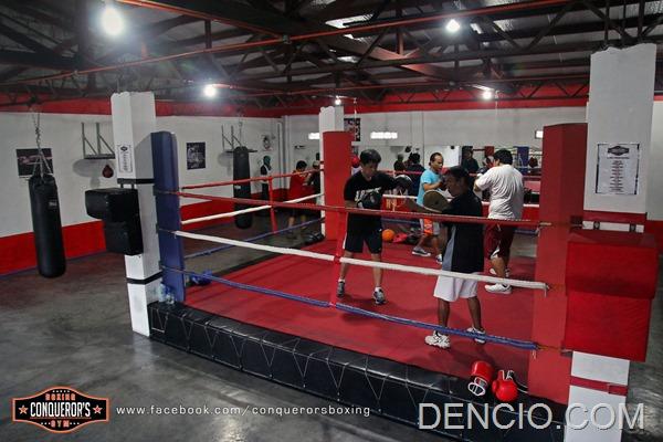 Conquerors Boxing 11