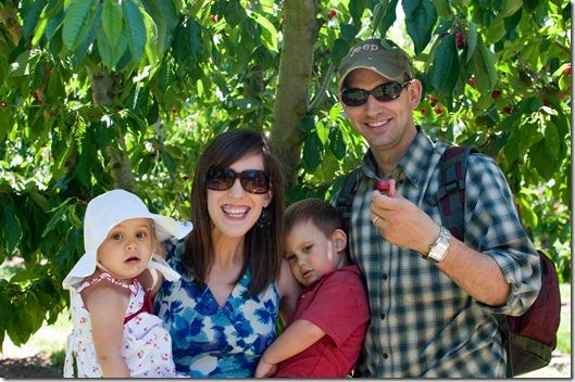 Cherry Picking at Buckley Cherries - Gilroy, CA