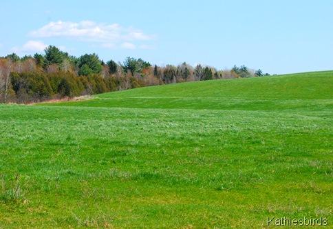 4. farmland