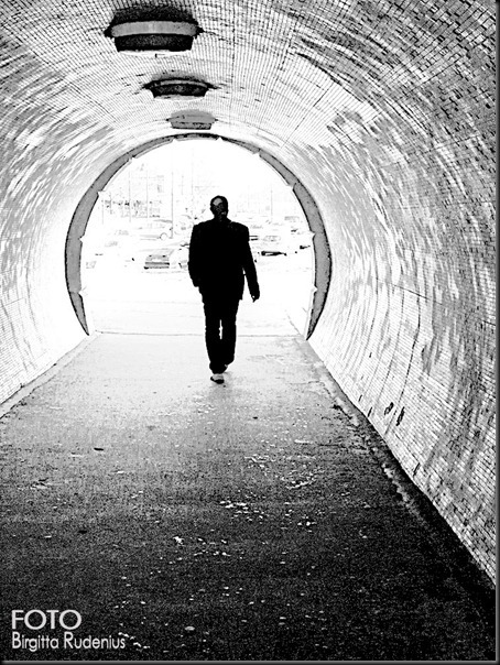 2012_086_0321_tunnelseende