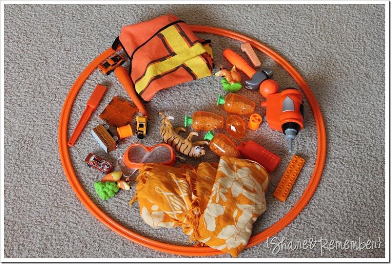 Orange Sorting Hoop