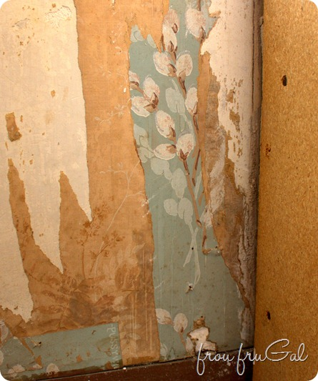Kitchen Demo - Pussywillow Wallpaper