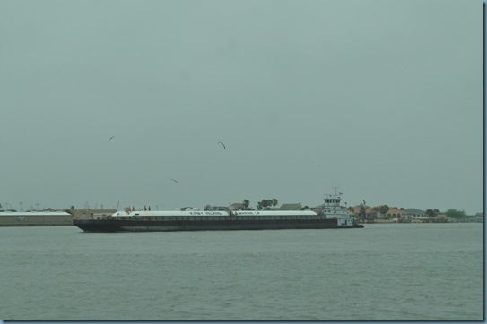 04-17-13 Port Aransas 11