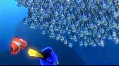 31 le banc de poissons