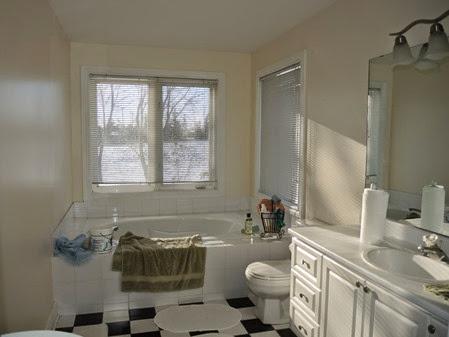 20141119_095558-bathroom-remodel