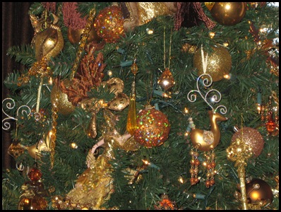 mbr tree closeup 1