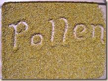 Valley pollen