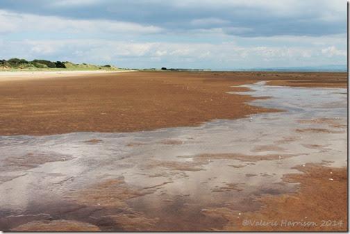 5-Mersehead-beach