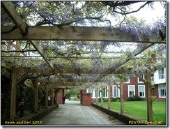 Shots from Warwick University
