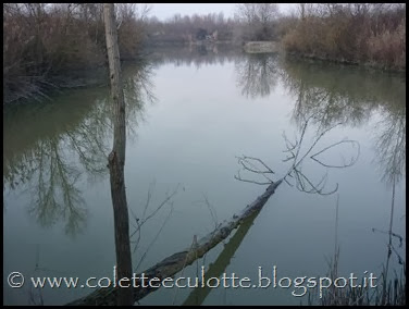 Passeggiata al Dosolo - 1 gennaio 2013 (53)